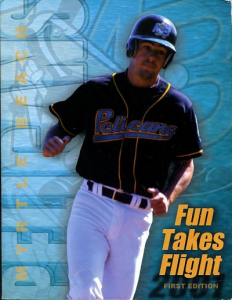 Myrtle Beach Pelicans Program