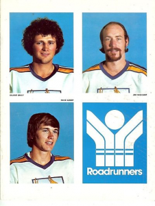 1977 Phoenix Roadrunners Program